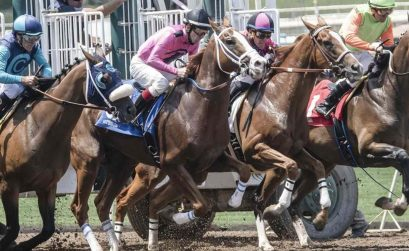 Betting On The Running Horse